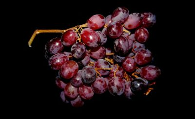 Tratamiento de vinoterapia
