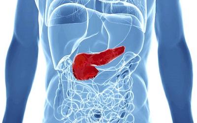 Pancreas Glucosa Basal