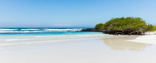 Playa de Galapagos en Bahia Tortuga Ecuador
