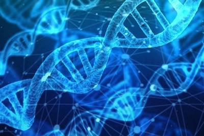 Salud y Genetica