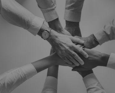 Colaboración y éxito en internet