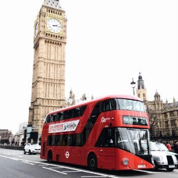 bus transporte economico
