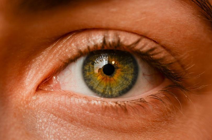 angiografia ocular