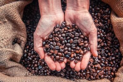 Cómo hacer un café de calidad en casa