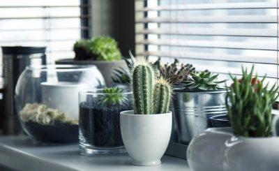 Ideas para renovar tu casa con manualidades